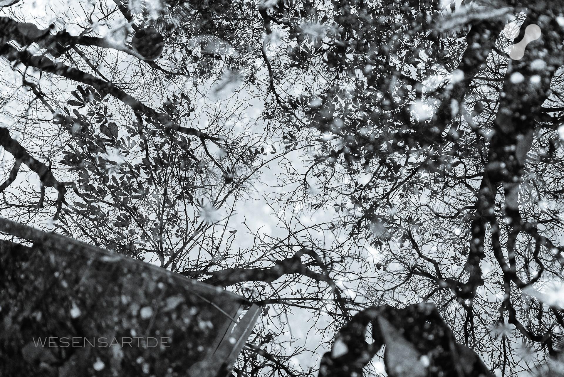 Kaltes Novembergrau