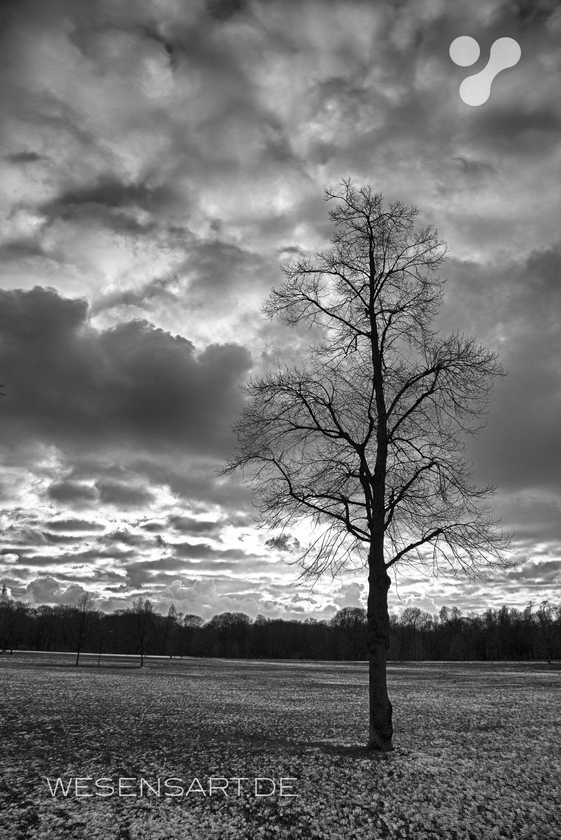 Wolken im Englischen Garten